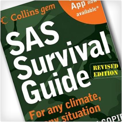 SAS-Survival-Guide