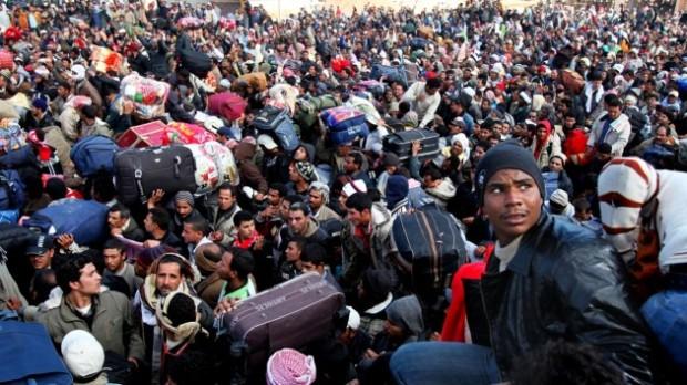 migrants1-630x354