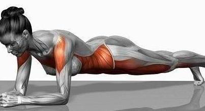 plank-muscles-