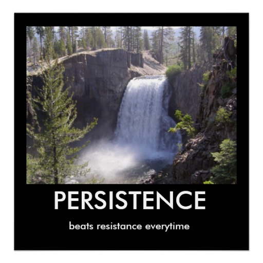 persistence_print-r82ee3d42e1bc467ea33a639f8127beed_ai6fi_8byvr_512